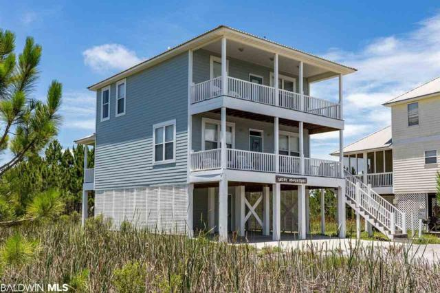 729 Morgantown Blvd, Gulf Shores, AL 36542 (MLS #281000) :: The Premiere Team