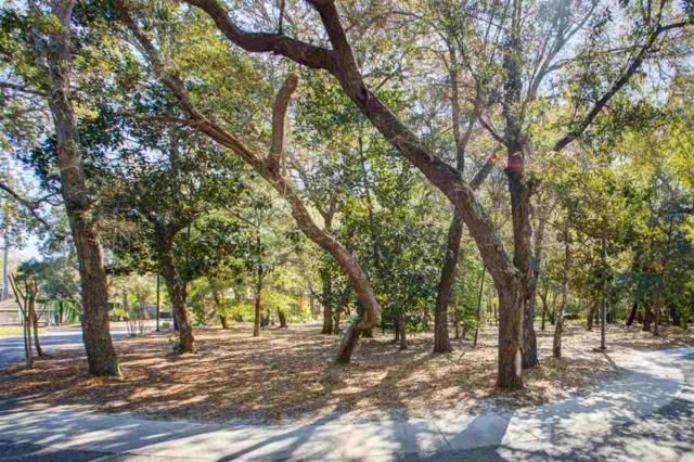 54109 Certain Circle, Orange Beach, AL 36561 (MLS #281837) :: Elite Real Estate Solutions