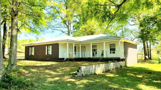 45960 Old Carney Rd, Bay Minette, AL 36507 (MLS #281866) :: JWRE Mobile