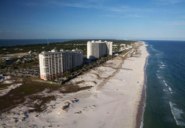527 Beach Club Trail D-510, Gulf Shores, AL 36542 (MLS #282042) :: Jason Will Real Estate