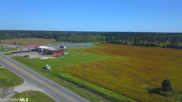 27950 Us Highway 98, Elberta, AL 35861 (MLS #282185) :: Jason Will Real Estate
