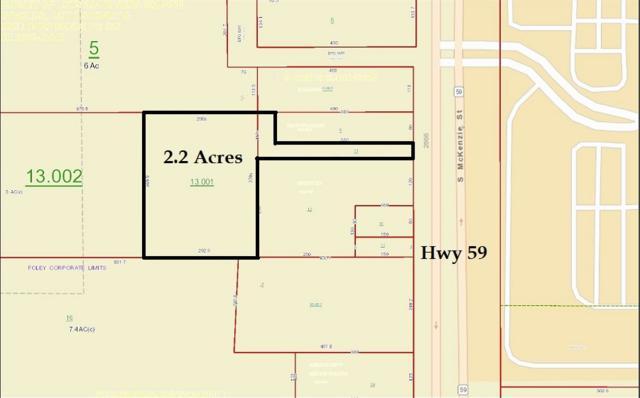 10337 St Hwy 59, Foley, AL 36535 (MLS #282346) :: Jason Will Real Estate