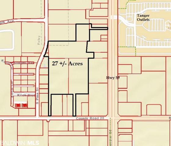 10253 St Hwy 59, Foley, AL 36535 (MLS #282397) :: Jason Will Real Estate