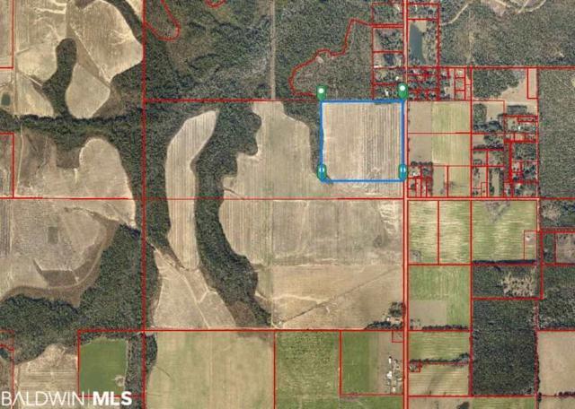 0000 N County Road 91, Lillian, AL 36549 (MLS #282512) :: Gulf Coast Experts Real Estate Team