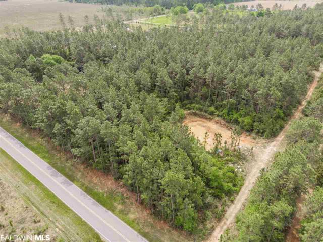 24768 County Road 87, Robertsdale, AL 36567 (MLS #282530) :: Jason Will Real Estate