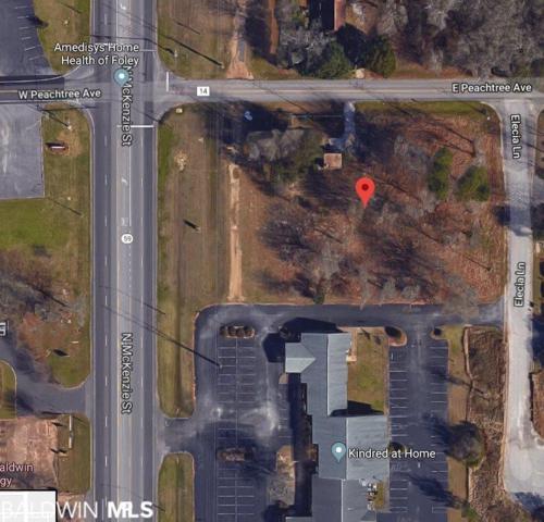 0 St Hwy 59, Foley, AL 36535 (MLS #282672) :: Jason Will Real Estate