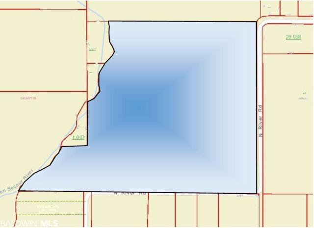 0000 N River Road, Foley, AL 36535 (MLS #282749) :: Gulf Coast Experts Real Estate Team