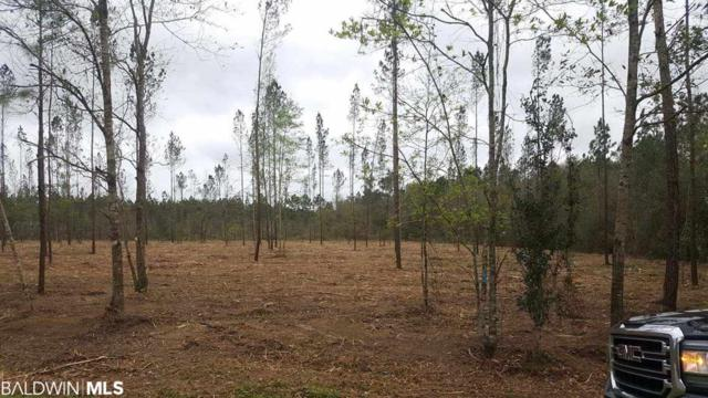 1 County Road 87, Robertsdale, AL 36567 (MLS #282916) :: Elite Real Estate Solutions