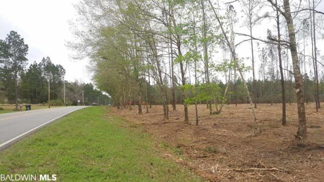 2 County Road 87, Robertsdale, AL 36567 (MLS #282918) :: Elite Real Estate Solutions