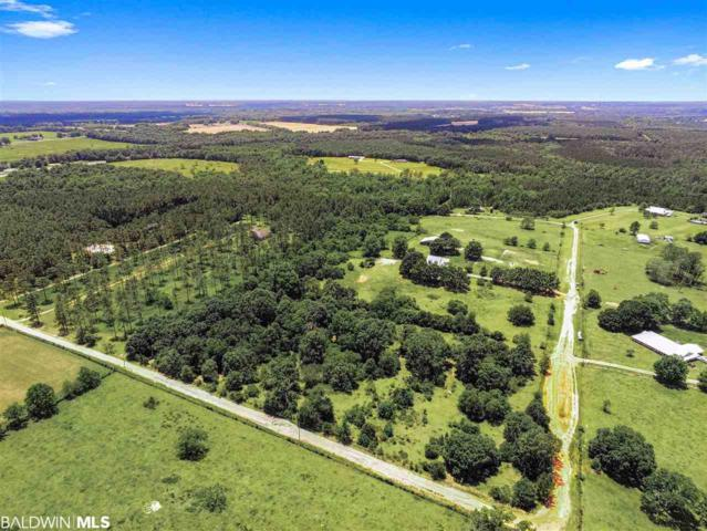 28855 Rose Run Rd, Robertsdale, AL 36567 (MLS #284151) :: Jason Will Real Estate