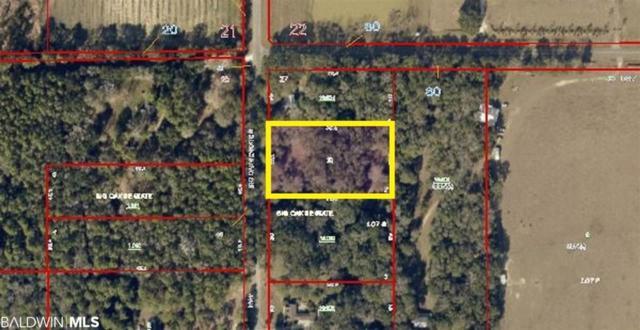 12910 County Road 49, Foley, AL 36535 (MLS #284285) :: Gulf Coast Experts Real Estate Team