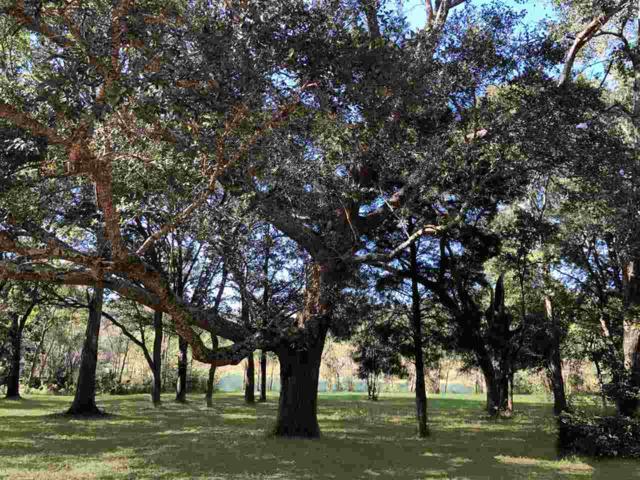 0 Beasley Road, Foley, AL 36535 (MLS #284321) :: Ashurst & Niemeyer Real Estate