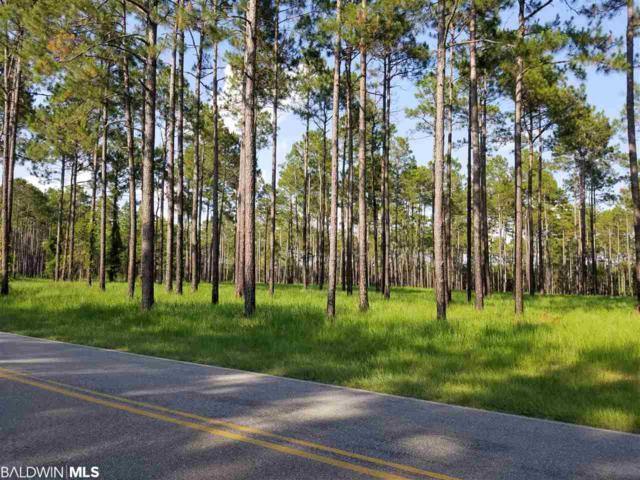 0 County Road 64, Robertsdale, AL 36567 (MLS #284632) :: Elite Real Estate Solutions