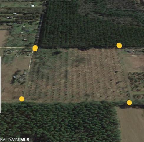0 Bender Road, Foley, AL 36535 (MLS #285061) :: Jason Will Real Estate