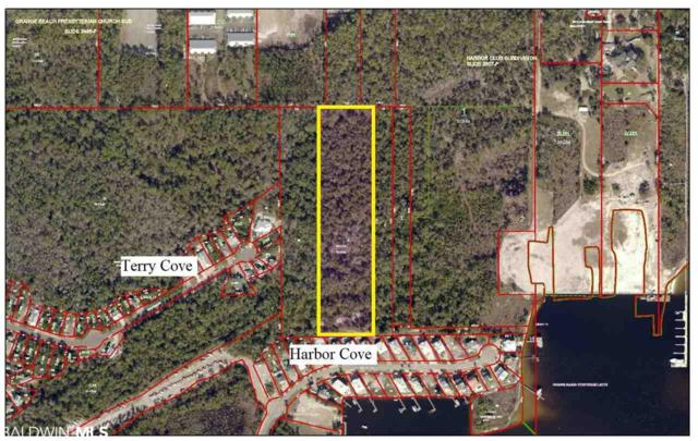 Parcel 9 Terry Cove Drive, Orange Beach, AL 36561 (MLS #285197) :: Alabama Coastal Living