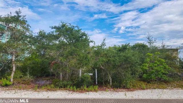 10 Meeting St, Orange Beach, AL 36561 (MLS #285679) :: Coldwell Banker Coastal Realty