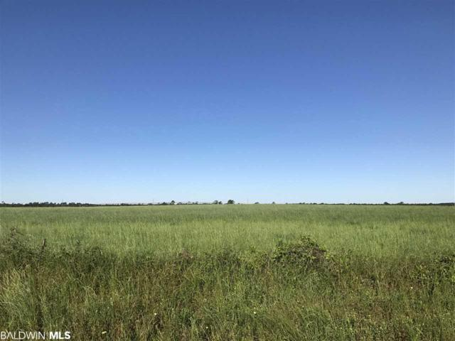0000 N County Road 91, Lillian, AL 36549 (MLS #286029) :: Jason Will Real Estate