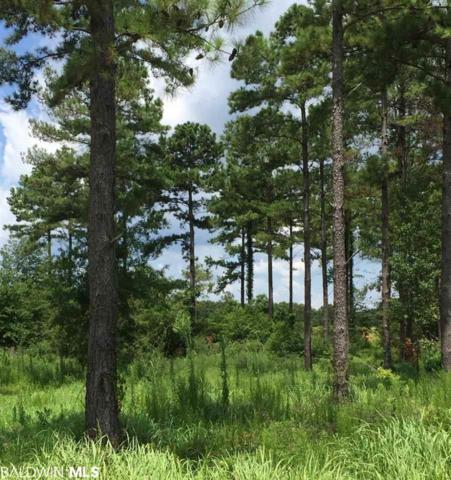 Lot 4 Kings Court, Foley, AL 36535 (MLS #286039) :: Jason Will Real Estate