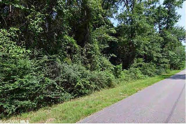 0 Fish River Road, Foley, AL 36555 (MLS #286558) :: ResortQuest Real Estate