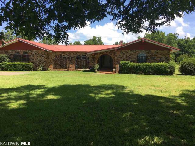 16949 County Road 16, Foley, AL 36535 (MLS #286745) :: Jason Will Real Estate