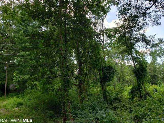 0 Highway 59, Stockton, AL 36579 (MLS #287289) :: Jason Will Real Estate