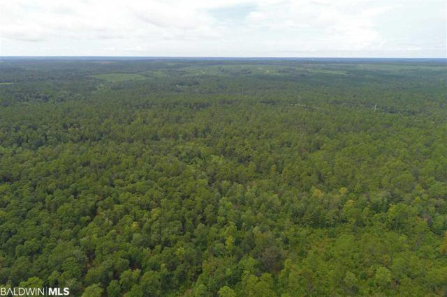 0 Us Highway 29, Mcdavid, FL 32568 (MLS #287317) :: Jason Will Real Estate