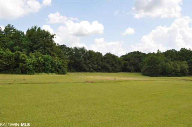 41360 County Road 39, Bay Minette, AL 36507 (MLS #287566) :: Elite Real Estate Solutions