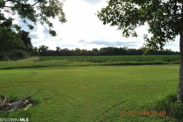 384 NE Goulsby Farm Road, Brewton, AL 36426 (MLS #287628) :: Jason Will Real Estate