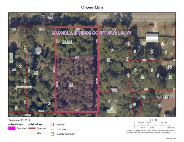 0 W Us Highway 98, Magnolia Springs, AL 36555 (MLS #289299) :: ResortQuest Real Estate