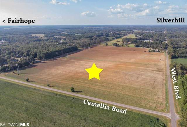0 Camellia Road, Silverhill, AL 36576 (MLS #289860) :: The Kathy Justice Team - Better Homes and Gardens Real Estate Main Street Properties