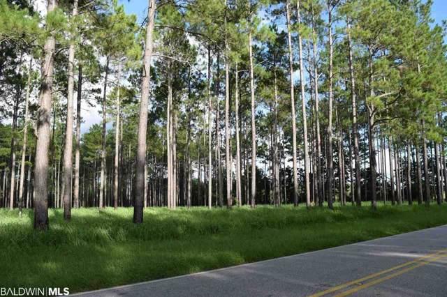 32524 County Road 64, Robertsdale, AL 36567 (MLS #290377) :: Ashurst & Niemeyer Real Estate
