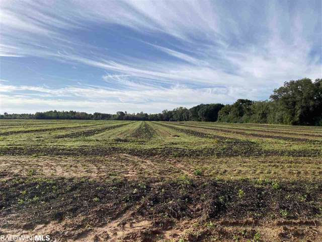0 County Road 26, Foley, AL 36535 (MLS #290936) :: Jason Will Real Estate