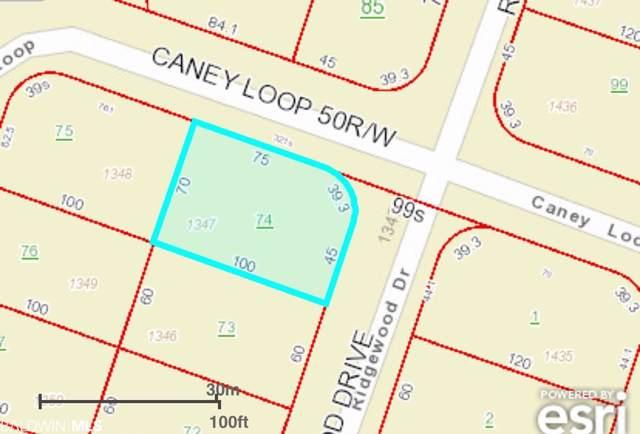 1347 Ridgewood Drive, Lillian, AL 36549 (MLS #290952) :: Jason Will Real Estate