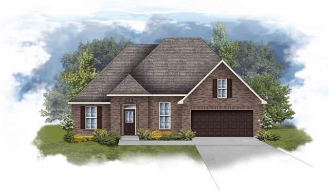 1753 Vivace Drive, Foley, AL 36535 (MLS #291042) :: Elite Real Estate Solutions