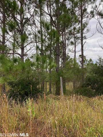 0 Lakeshore Drive, Gulf Shores, AL 36547 (MLS #291293) :: ResortQuest Real Estate