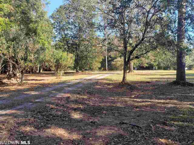 21655 Us Highway 98, Foley, AL 36535 (MLS #291899) :: JWRE Powered by JPAR Coast & County