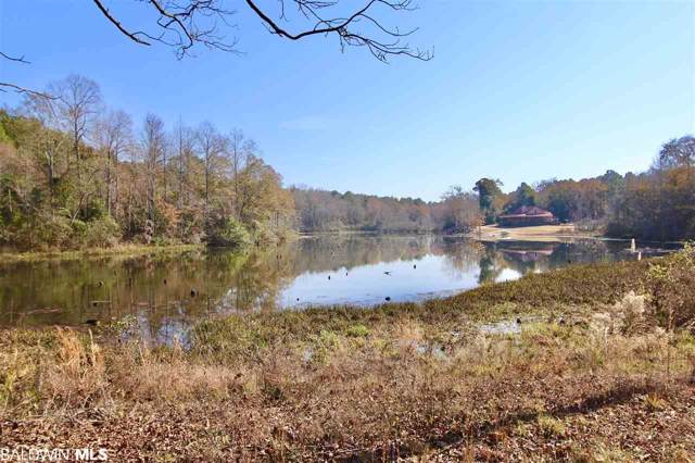 6234 County Road 2225, Troy, AL 36079 (MLS #291944) :: JWRE Powered by JPAR Coast & County