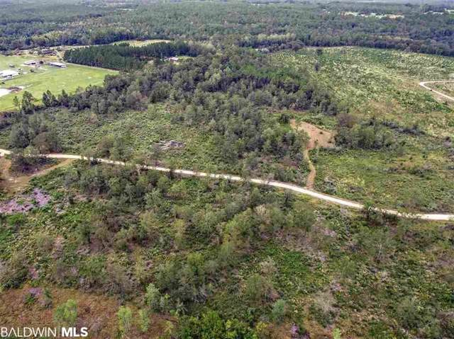 0 Burbon Lane, Robertsdale, AL 36567 (MLS #291962) :: Dodson Real Estate Group