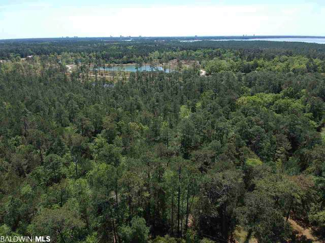 0 County Road 49, Foley, AL 36535 (MLS #292045) :: JWRE Orange Beach & Florida