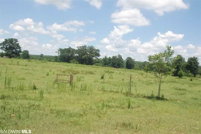 0-3 Highway 31, Castleberry, AL 36432 (MLS #292231) :: Elite Real Estate Solutions
