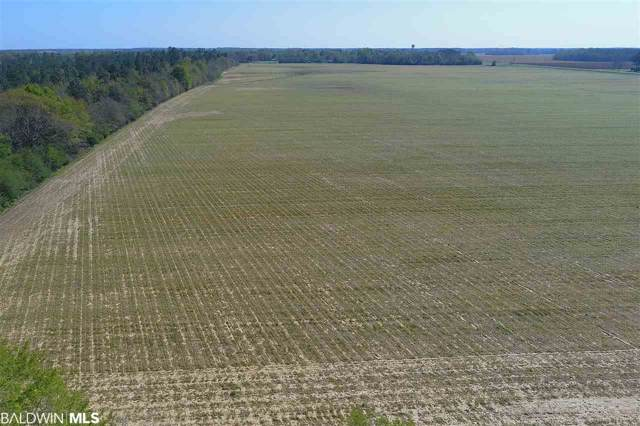 7410 N Highway 99, Century, AL 32535 (MLS #293432) :: Gulf Coast Experts Real Estate Team