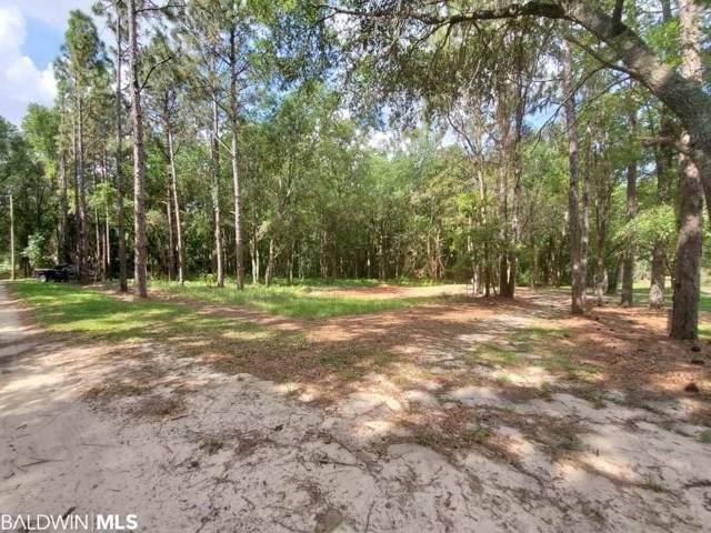 0 Hazelwood Rd, Robertsdale, AL 36567 (MLS #293618) :: Dodson Real Estate Group