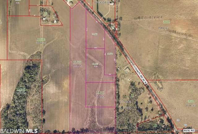 0 County Road 62, Robertsdale, AL 36567 (MLS #294848) :: Ashurst & Niemeyer Real Estate
