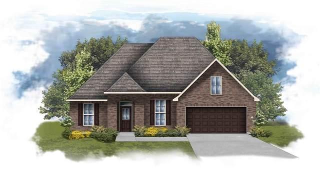 524 Crackwillow Ave, Fairhope, AL 36532 (MLS #295280) :: Elite Real Estate Solutions