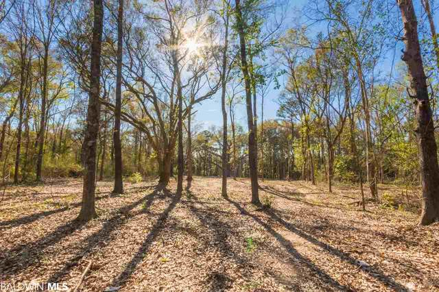 25923 Chene Trace, Robertsdale, AL 36567 (MLS #295990) :: ResortQuest Real Estate