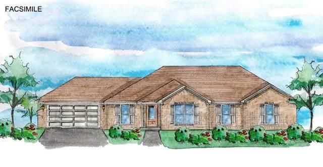 18255 Memphis Way, Robertsdale, AL 36567 (MLS #296237) :: Elite Real Estate Solutions