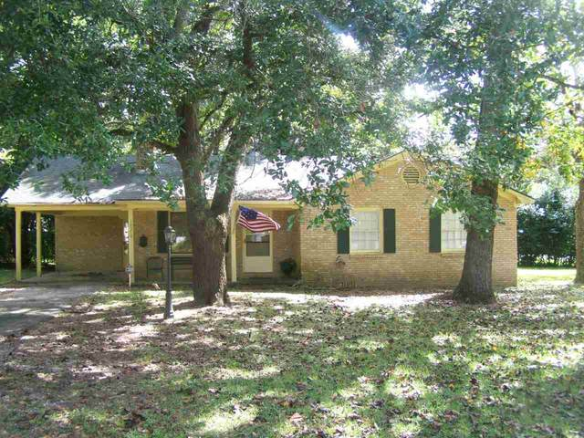 12374 Magnolia Springs Hwy, Magnolia Springs, AL 36555 (MLS #296309) :: Dodson Real Estate Group