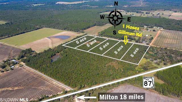 1 Hosea Gillman Rd, Milton, FL 32570 (MLS #297173) :: JWRE Powered by JPAR Coast & County