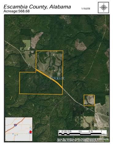 14168 Bradley Road, Bradley, AL 36483 (MLS #298700) :: Elite Real Estate Solutions