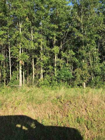 29200 County Road 68 Ext, Robertsdale, AL 36567 (MLS #298736) :: ResortQuest Real Estate